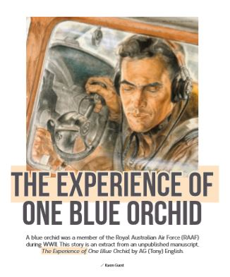 The Experience of One Blue Orchid